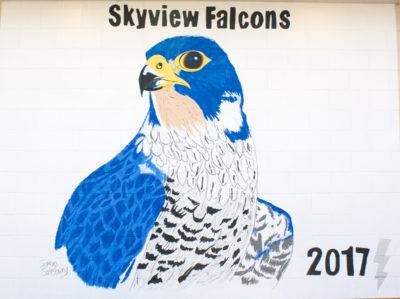 skyview_1200